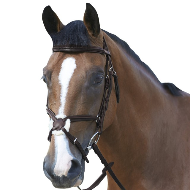 Mark Todd Padded Grackle Bridle (Havana)
