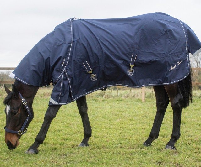 Mark Todd Lightweight Turnout Rug (Navy & Beige) - No Neck