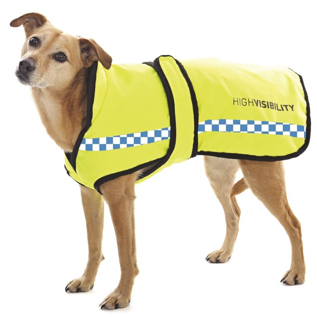 Equisafety POLITE Waterproof Dog Rug (Yellow)
