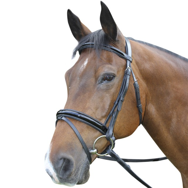 Mark Todd Performance Patent Piped Flash Bridle (Black)
