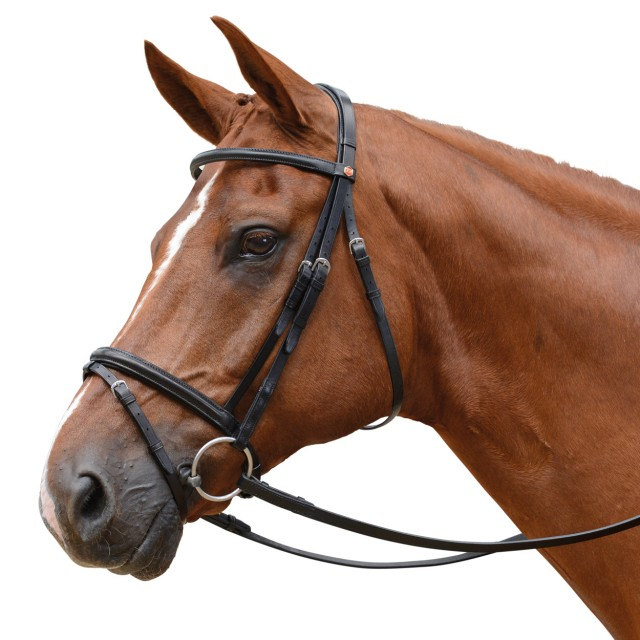 Albion Kb Competition Snaffle Bridle With Flash 20mm