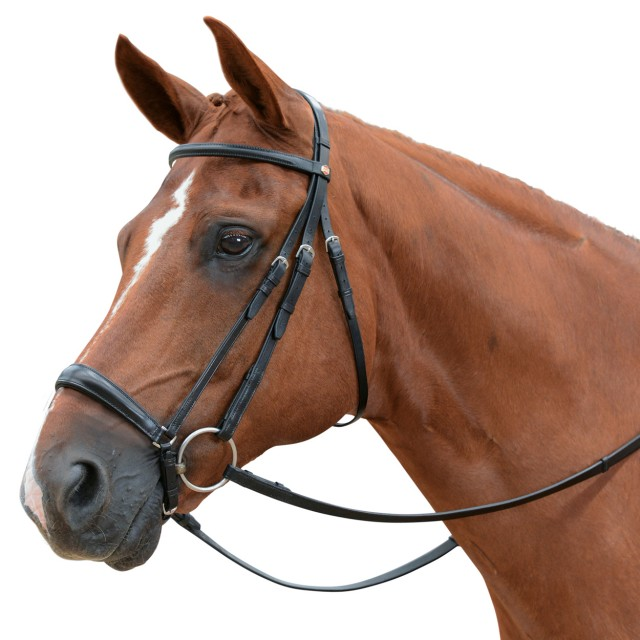 Albion KB Competition Snaffle Bridle with Drop