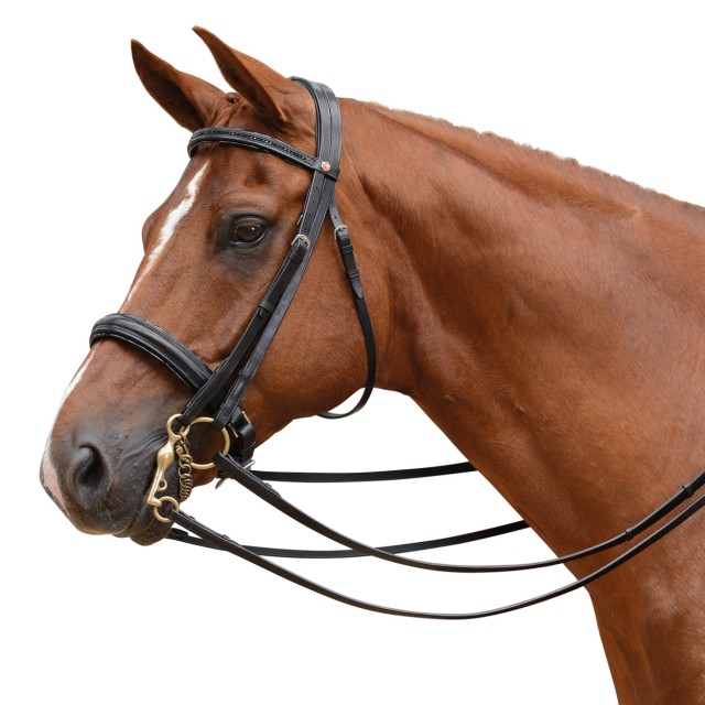 Albion KB Competition Weymouth Bridle with Crank (30mm thickness)
