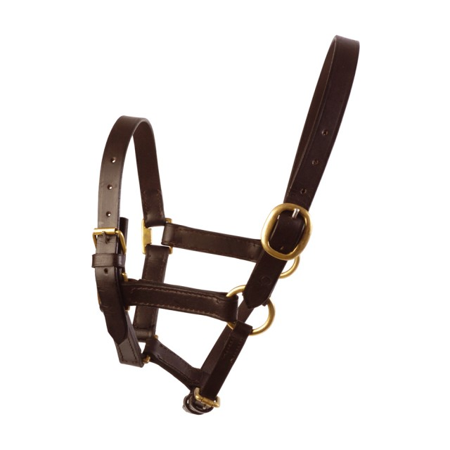 JHL Leather Foal Headcollar (Brown)