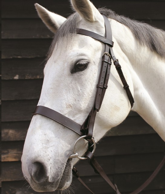 JHL Plain Cavesson Bridle (Brown)