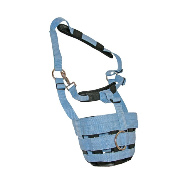 JHL Comfort Grazing Muzzle (Baby Blue)