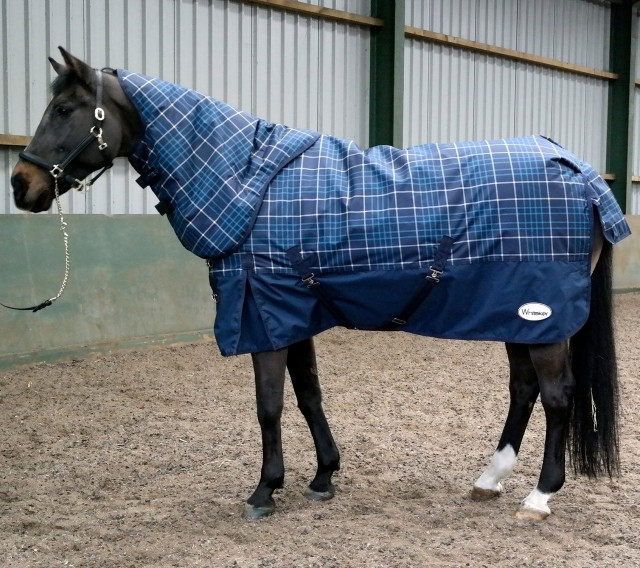 Whitaker Chiserley 200g Turnout Rug With Hood (Navy/Aqua Check)