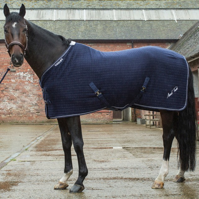 Mark Todd Coolex Cooler Rug (Navy & Silver)