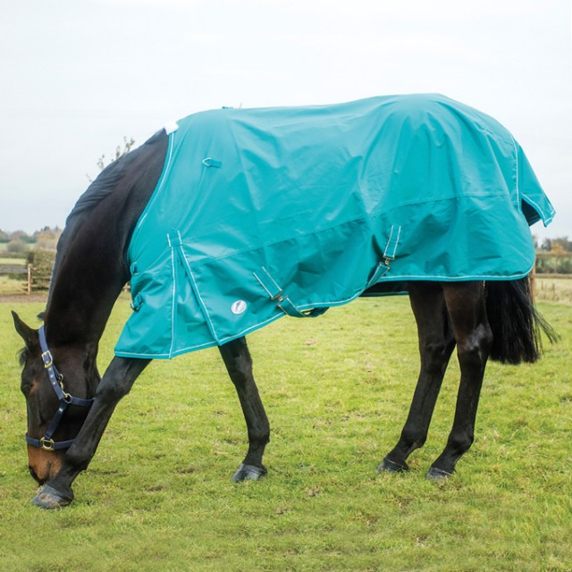 JHL Essential Lightweight Turnout Rug (Turquoise)