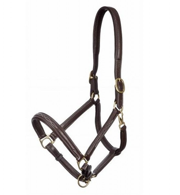 LeMieux Embroidered Soft Leather Headcollar (Brown)